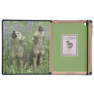 Wolf Puppies Howling In Meadow Cover For iPad