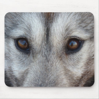 Wolf Puppy Mousepad Gifts Canadian Sled Dogs