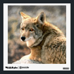 """Wolf Rain Graphic Art Wall Sticker<br><div class=""""desc"""">Stunning wolf illustration Photograph laying in the rain. Vivid colors and high resolution graphic art.</div>"""