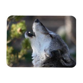 wolf rectangular photo magnet