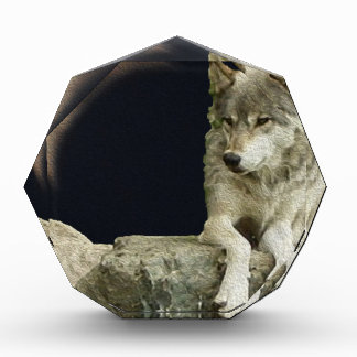 Wolf Relaxing Acrylic Award