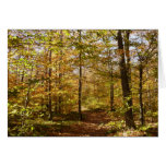 Wolf Rocks Trail in Autumn Pennsylvania Landscape Card