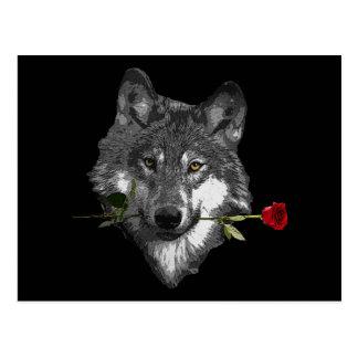 Wolf Rose Postcard