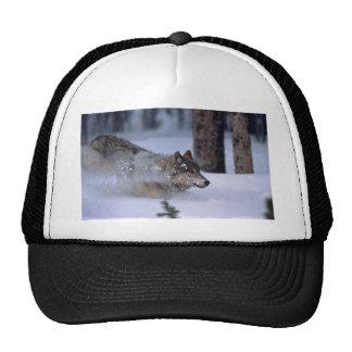 Wolf Running In Snow Trucker Hat