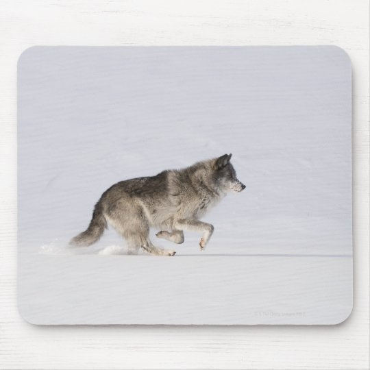 Wolf running in the snow 2 mouse pad