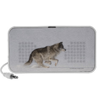 Wolf running in the snow 2 travel speakers