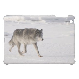 Wolf running in the snow iPad mini cover