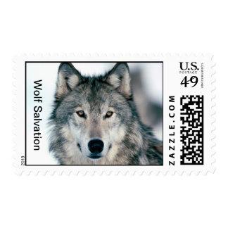 Wolf Salvation posatage stamp