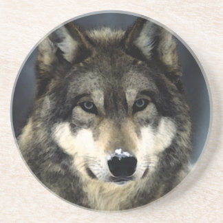 Wolf Sandstone Coaster