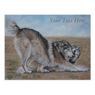 wolf scenic wildlife realist animal art postcard