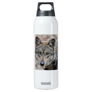 Wolf SIGG Thermo 0.5L Insulated Bottle