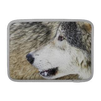 Wolf Sleeves For MacBook Air