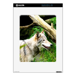 Wolf Smile Skin For The iPad