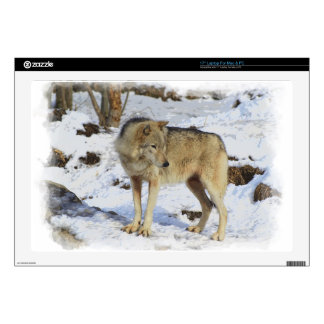 "Wolf & Snow Wolf-Lover Wild-Animal Alpha Male Skin For 17"" Laptop"