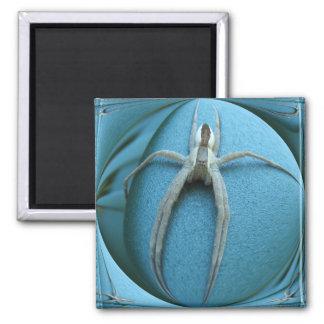 Wolf Spider ~ magnet