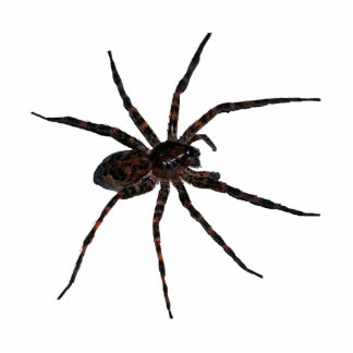 Wolf Spider pin Statuette