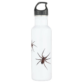 Wolf Spiders bottle