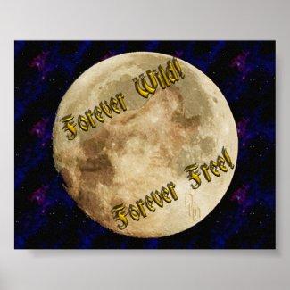 wolf spirit poster