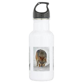 Wolf Stalking 18oz Water Bottle