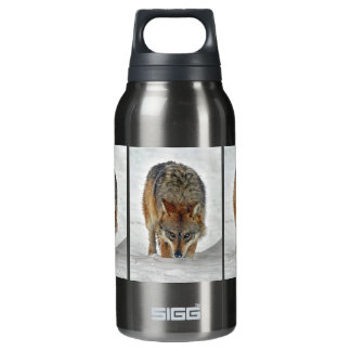 Wolf Stalking SIGG Thermo 0.3L Insulated Bottle