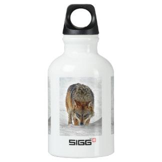 Wolf Stalking SIGG Traveler 0.3L Water Bottle