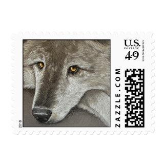 WOLF - Stamp