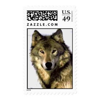 Wolf Stamp Postage