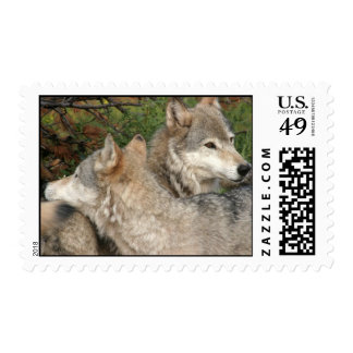 Wolf Stamps
