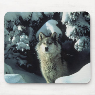 Wolf Standing in Snow Mouse Pad