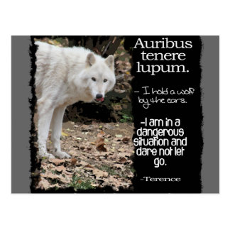 WOLF TERRENCE LATIN QUOTE POSTCARD