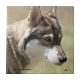 Wolf Tile