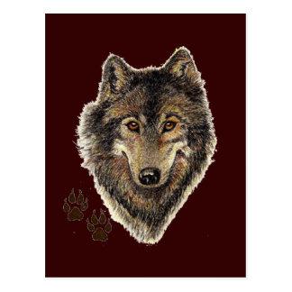 Wolf Totem, Animal Guide Inspirational Postcard