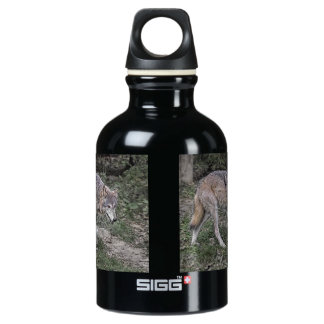 Wolf Tracking SIGG Traveler 0.3L Water Bottle