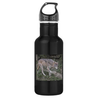 Wolf Tracking Stainless Steel Water Bottle