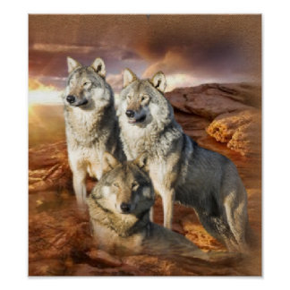 Wolf Trio poster