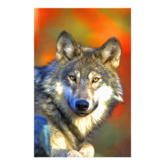 wolf wait for next opportunity and success stationery paper