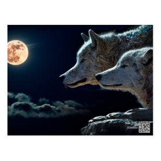 Wolf Wolves Howling at the Full Moon Postcard