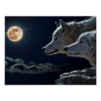 Wolf Wolves Howling at the Full Moon Poster