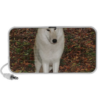 Wolf Wolves Nature Park Country Animal Wild Forest PC Speakers