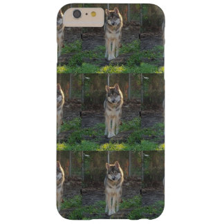 Wolfdog in sunlight barely there iPhone 6 plus case