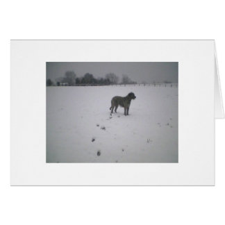 Wolfhound in snow greeting card