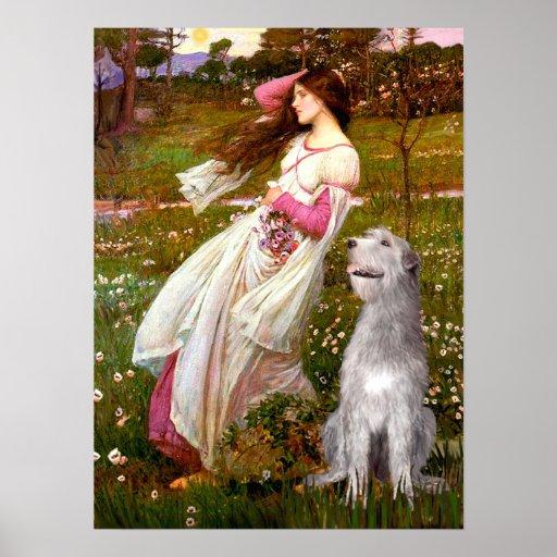 Wolfhound irlandés 6 - Windflowers Poster