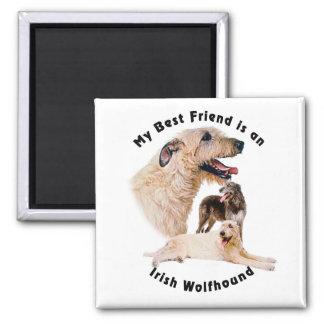 Wolfhound irlandés del mejor amigo imán cuadrado