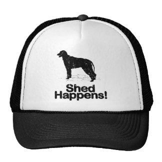 Wolfhound irlandés gorro