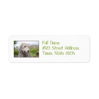 Wolfhound irlandés lindo etiqueta de remitente
