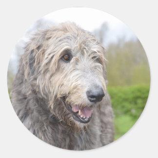 Wolfhound irlandés lindo pegatina redonda