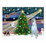 Wolfhound irlandés mágico del navidad postal