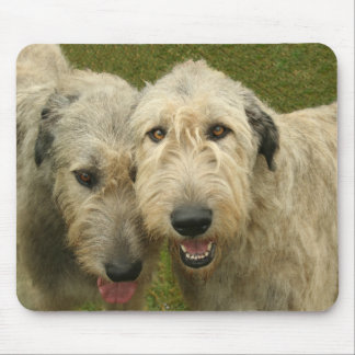 Wolfhounds irlandeses tapete de ratón