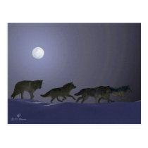 Wolfpack Postcard