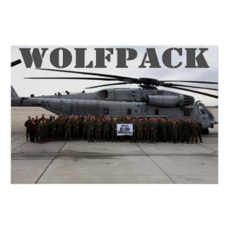 Wolfpack Squadron Poster